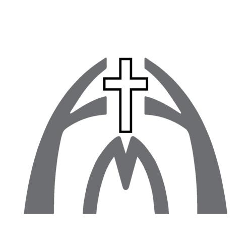 Ffm logo cross grey